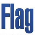 FlagDayConsulting